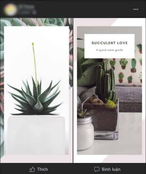 cách facebook hiển thị 2 ảnh hình chữ nhật dọc