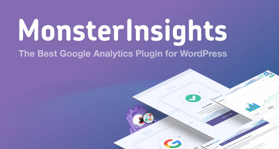 review MonsterInsights plugin
